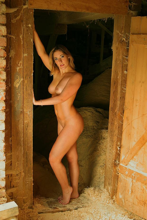 nude 3 artistic nude photo by photographer finephotoarts