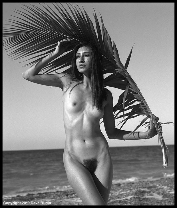 nude mexico 2019 artistic nude photo by photographer dave rudin
