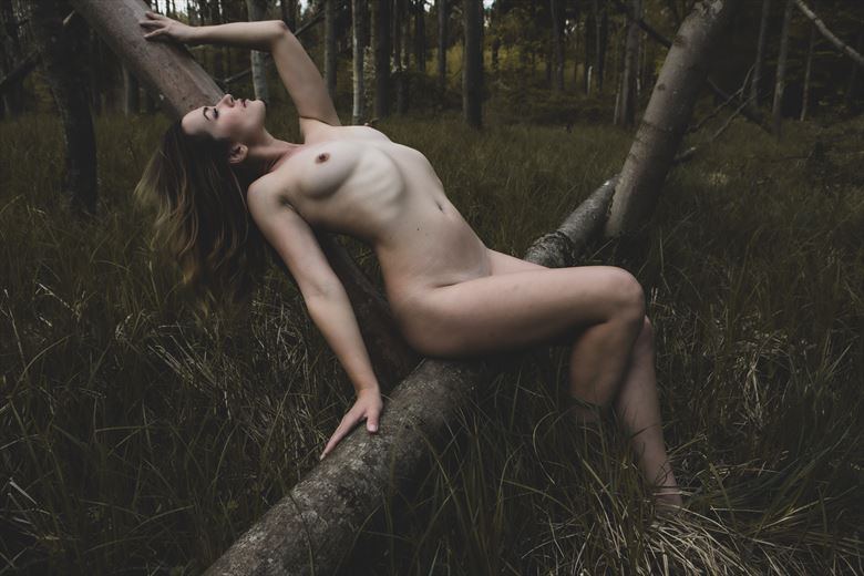 nude on trunk artistic nude photo by photographer looking_eye
