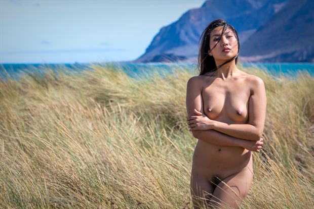 nude portrait in dune grass artistic nude photo by photographer aspiring imagery