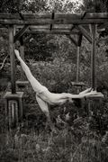 nude under gazebo artistic nude photo by photographer risen phoenix