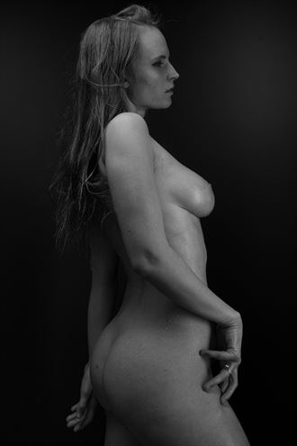 nude work artistic nude artwork by photographer ronnie louis