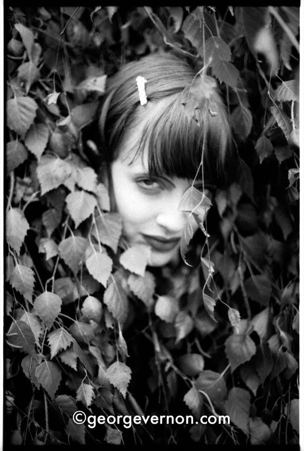 octavia in foliage nature photo by photographer georgevp
