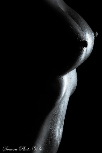 oil and water artistic nude photo by photographer spv