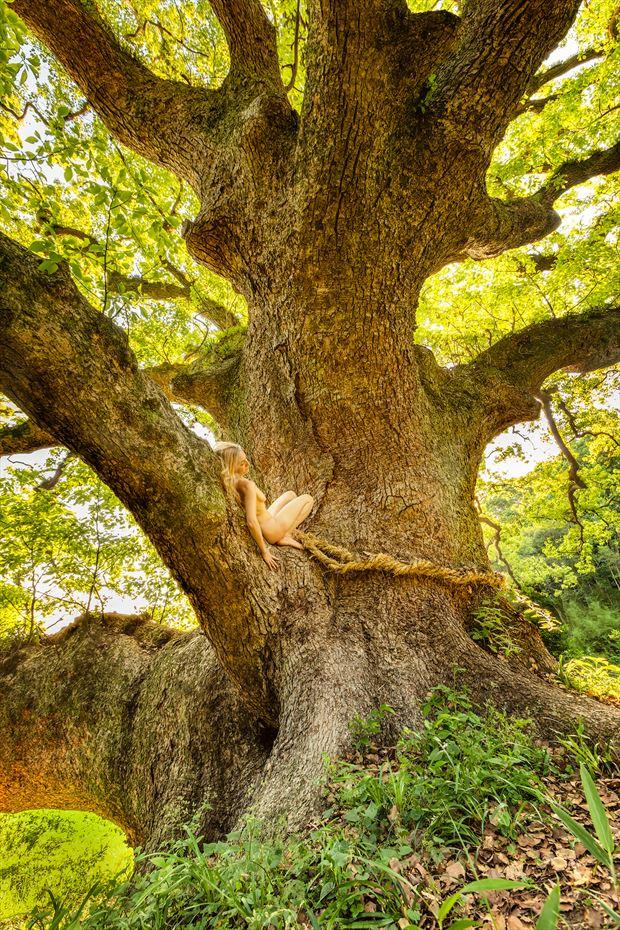 okusu shishi camphor shrine serenity artistic nude photo by photographer treegirl