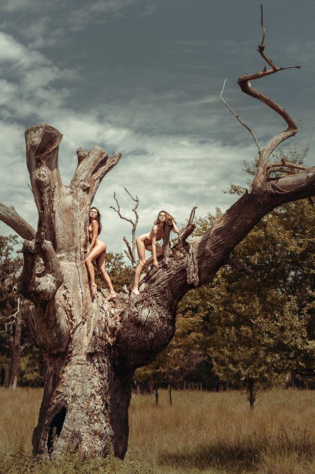 old tree muses artistic nude photo by photographer gabi gogiu