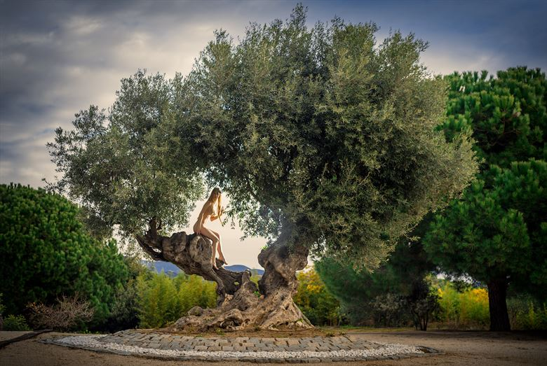 olive tree artistic nude photo by photographer ilya ishenko