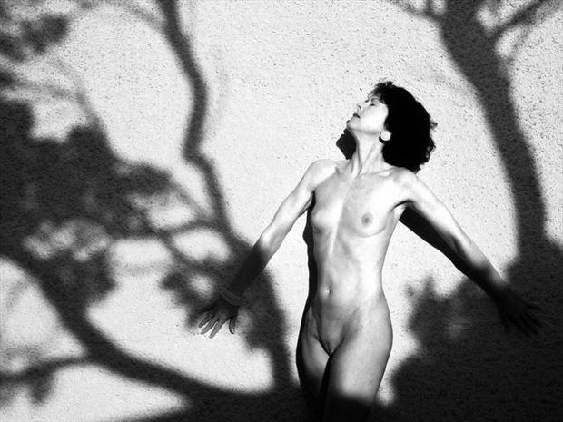 ombres de midi 1 artistic nude artwork by photographer dick