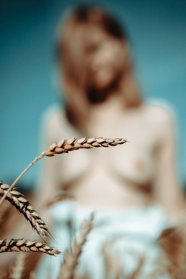 one day artistic nude photo by photographer shevron