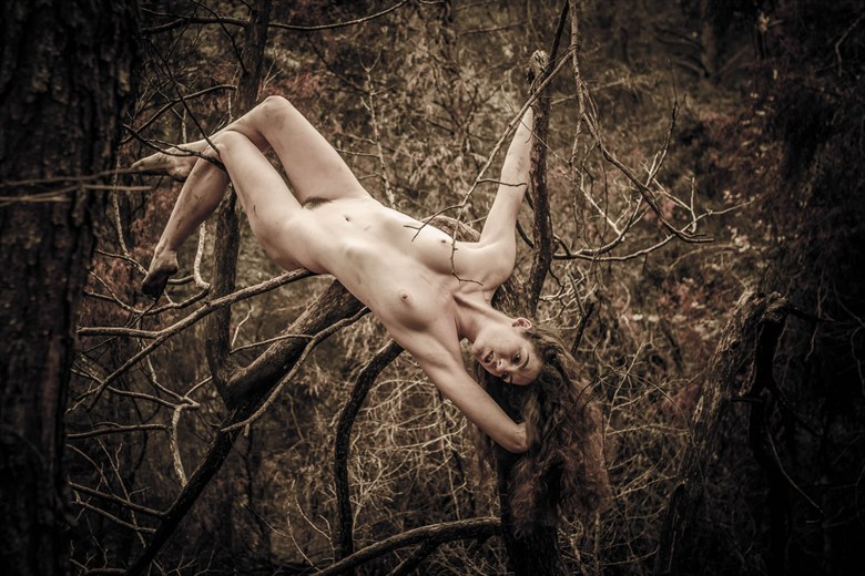 out on a limb artistic nude photo by photographer photowyse