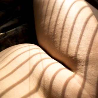 part of Playing with Light series Artistic Nude Artwork by Artist Zaftig Ribaldry