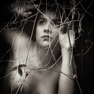 passiflora Artistic Nude Photo by Photographer Mused Renaissance