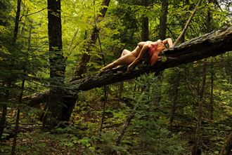 pattison state park wi artistic nude photo by photographer ray valentine