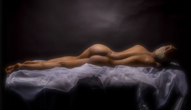 perfect lines artistic nude artwork by photographer paul archer