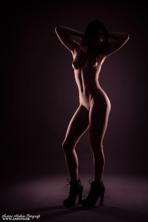 perfectus curvae artistic nude photo by photographer anders nielsen