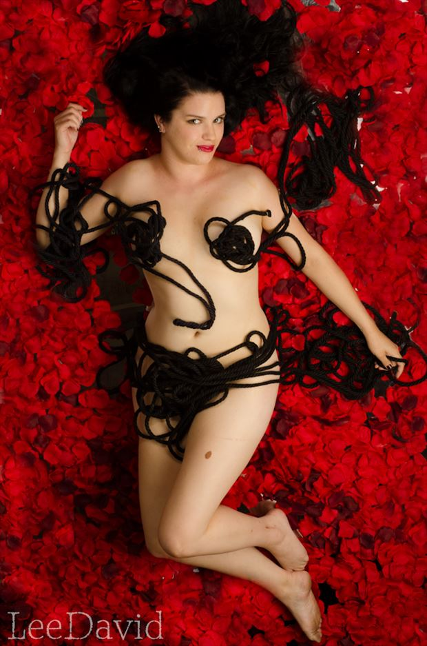 petals artistic nude photo by photographer lee david