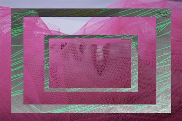pink 2 erotic photo by photographer peter van zwol