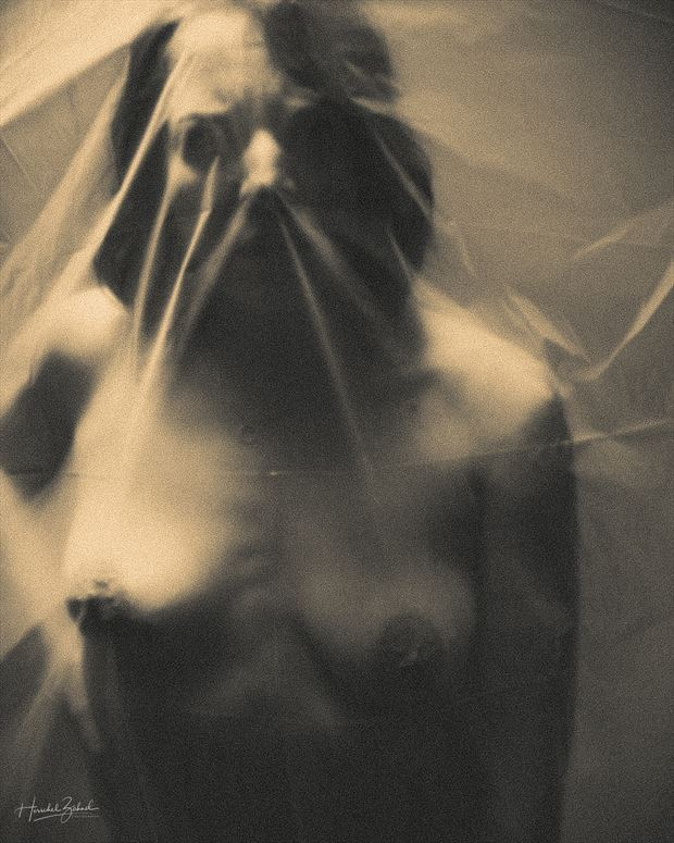plastic sheet artistic nude photo by photographer zahndh23