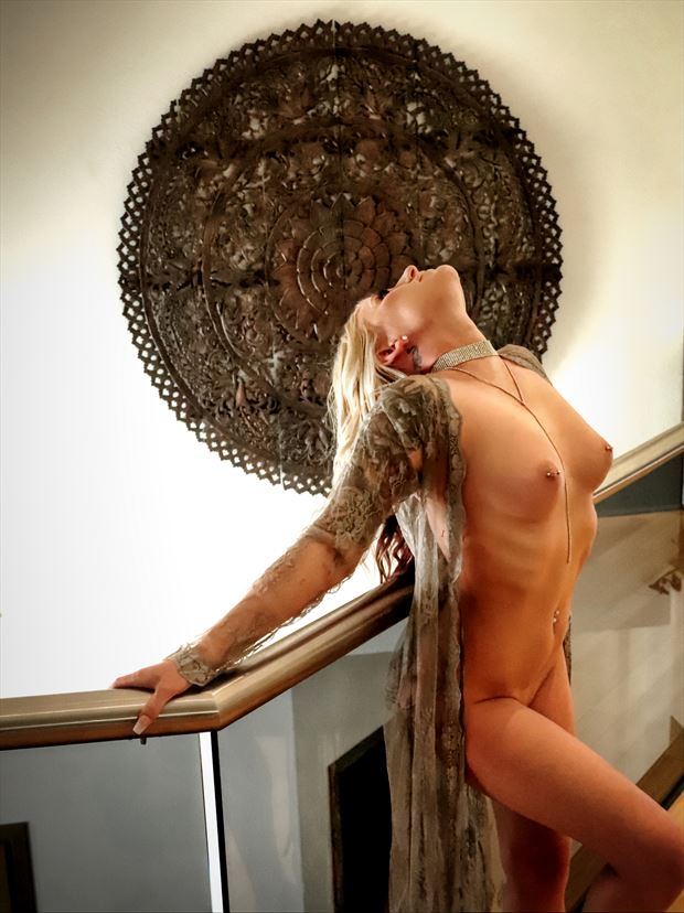 priscilla 5 artistic nude photo by photographer dan stone photo