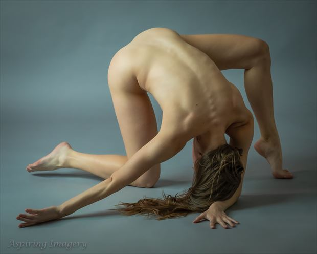 pursuit artistic nude photo by photographer aspiring imagery