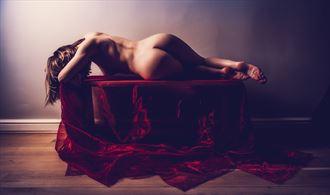 rachelle artistic nude artwork by photographer neilh