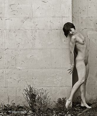 radka artistic nude photo by photographer gibson
