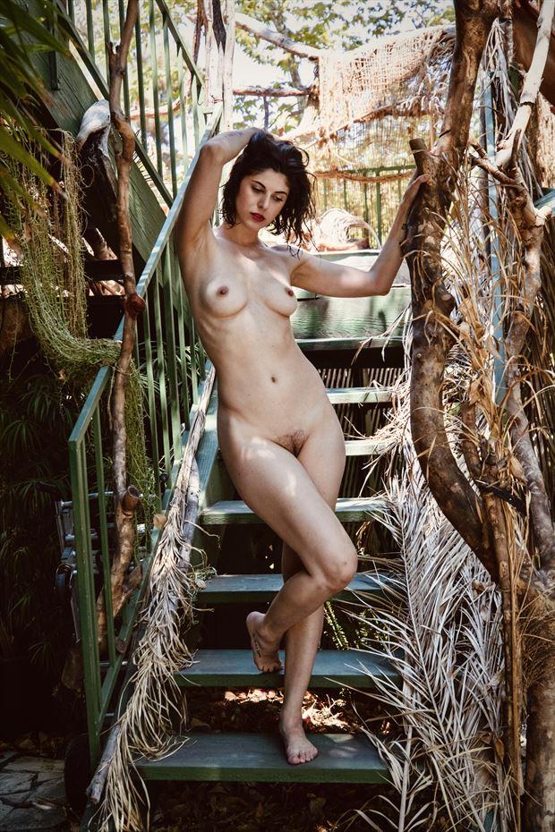 rainforest stairway 2 artistic nude photo by photographer crystallynn