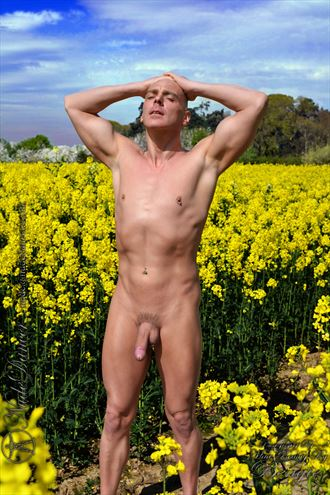 rapeseed fields artistic nude photo by model nudedancer