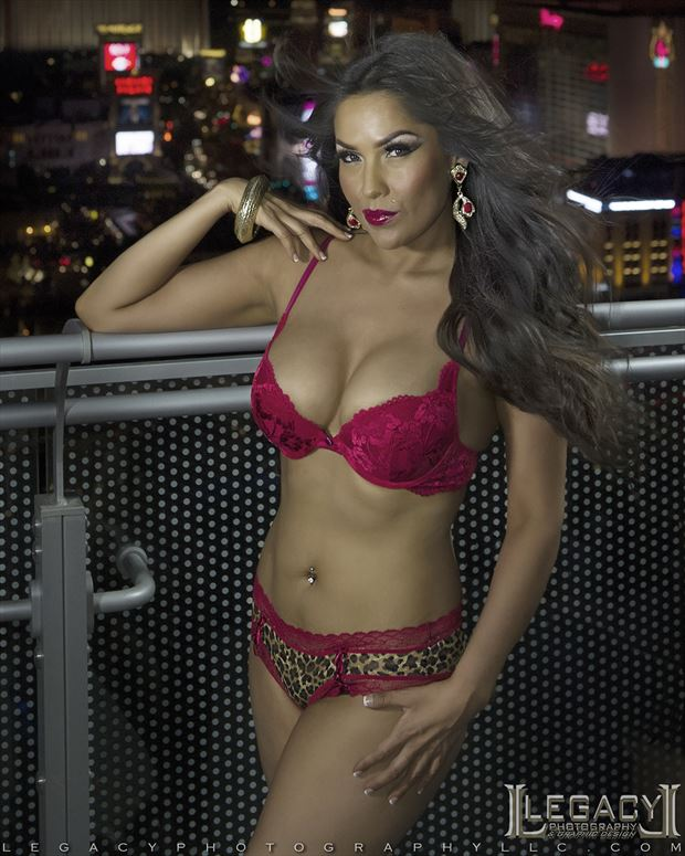 red hot and leopard lingerie lingerie photo by photographer legacyphotographyllc