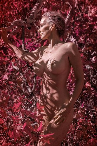 red sonla artistic nude photo by photographer dream digital photog