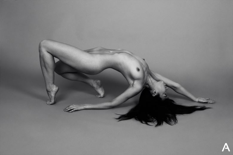 reina trifunovic artistic nude photo by photographer apetura