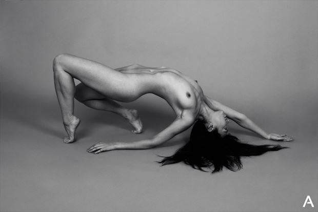 reina trifunovic artistic nude photo by photographer apetura