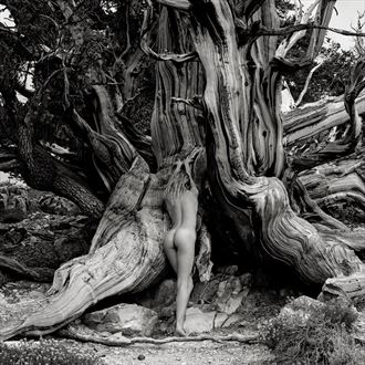 reverence artistic nude photo by photographer randall hobbet