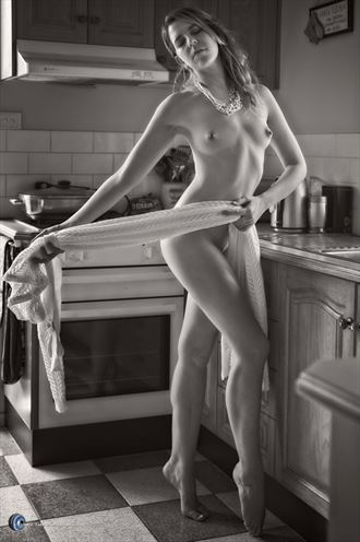 riley dancing in the kitchen artistic nude photo by photographer willson photo