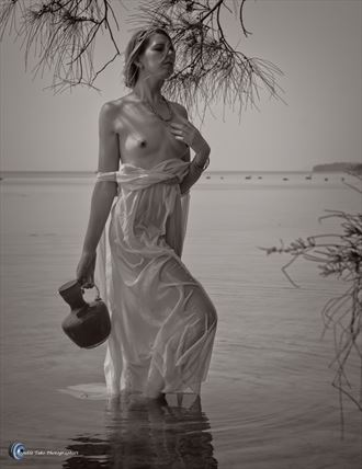 riley thetis and the swans artistic nude photo by photographer willson photo