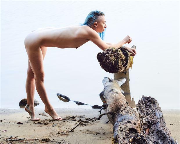 river sticks ii artistic nude photo by photographer teb art photo