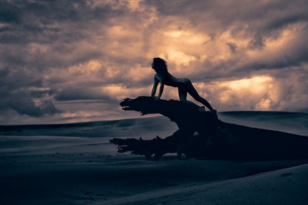 roar artistic nude photo by photographer stephen wong