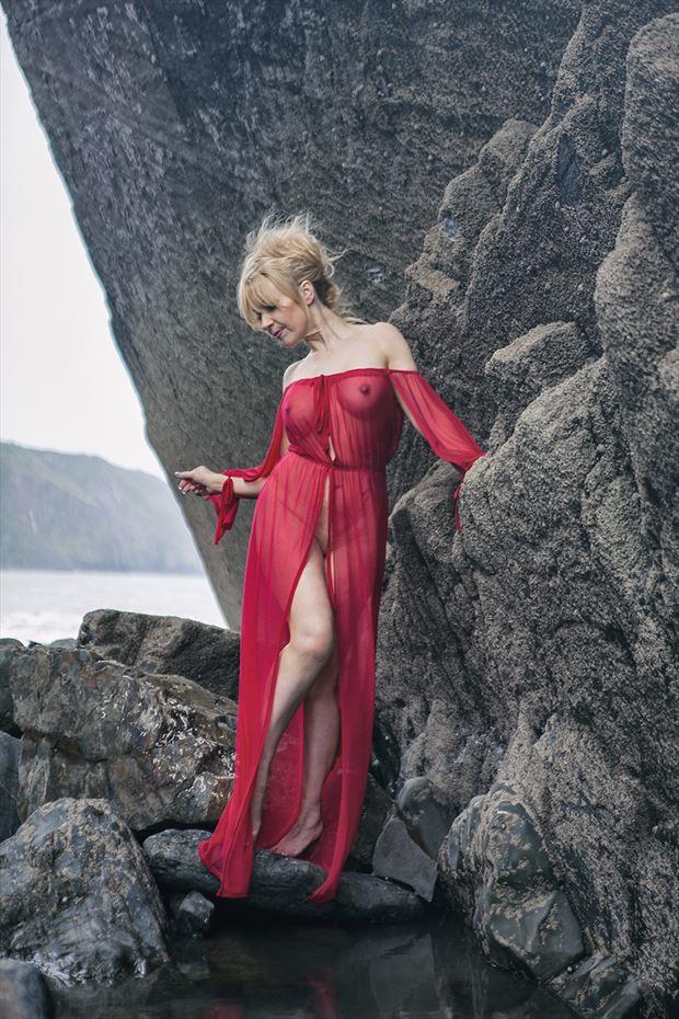 scarlet secret nature photo by photographer imagesse