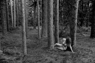 schoolcraft state park mn artistic nude photo by photographer ray valentine