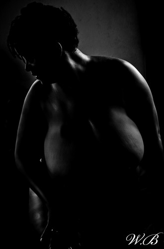 shadow of curves Artistic Nude Photo by Photographer PlenitudePhotography