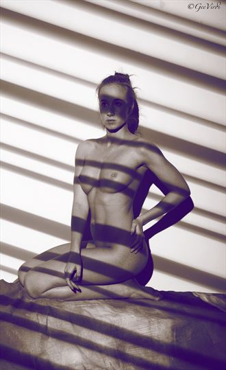 shadows lights artistic nude photo by photographer gee virdi