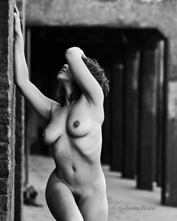 shape and form artistic nude photo by photographer gibson