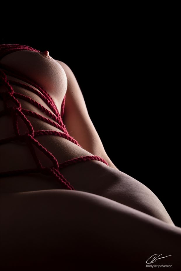 shibari study 38 artistic nude photo by photographer cory varcoe bodyscapes
