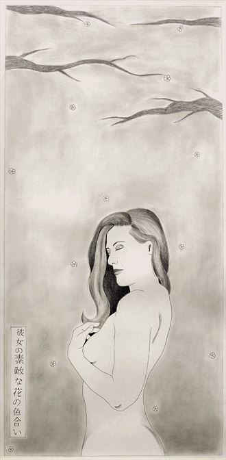 shin hanga 6 her lovely shade of blossoms artistic nude artwork by artist the artist s eyes
