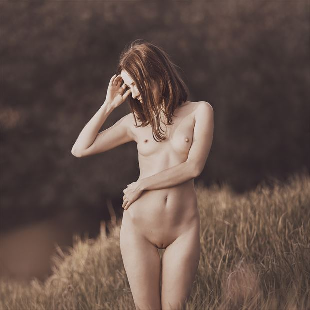 shine artistic nude photo by photographer dml