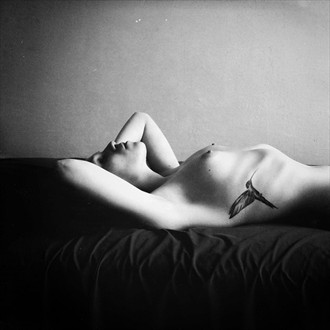 short story bout flying Artistic Nude Photo by Photographer panibe