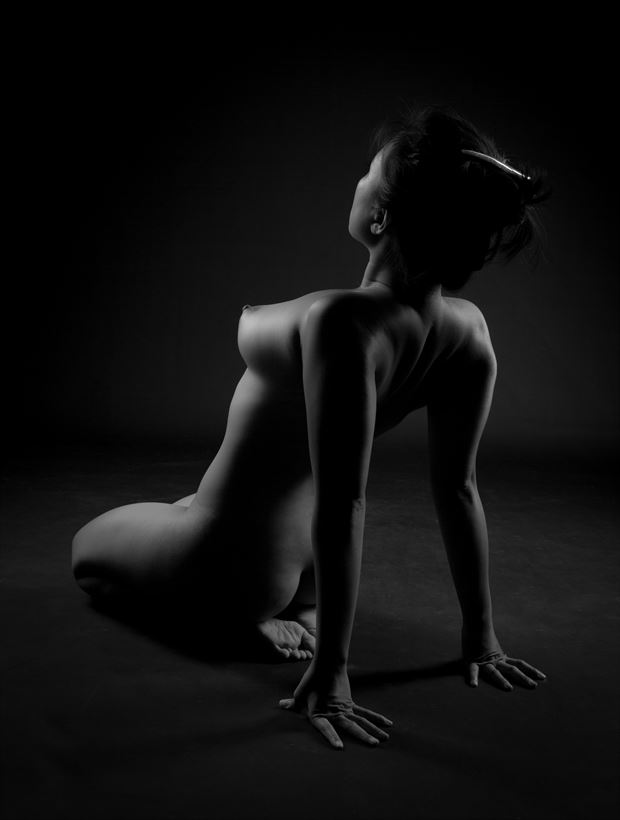shoulders Artistic Nude Photo by Photographer Allan Taylor