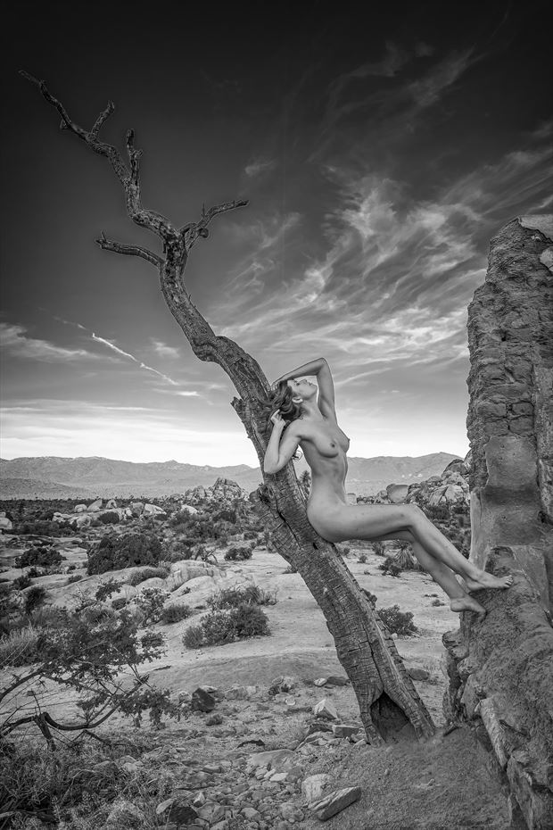 sienna upper mojave desert artistic nude photo by photographer philip turner