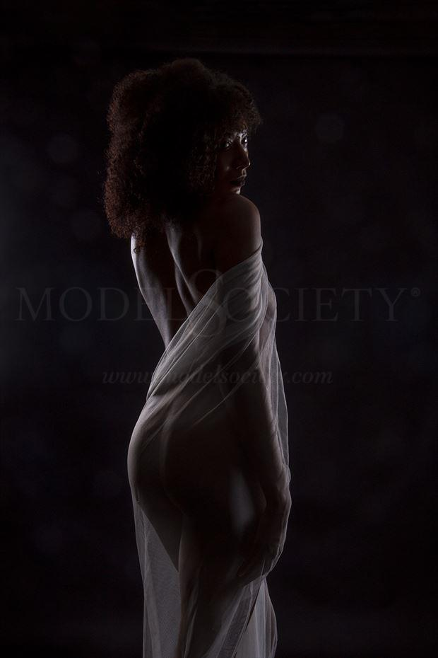silhouette implied nude photo by photographer tonyl66