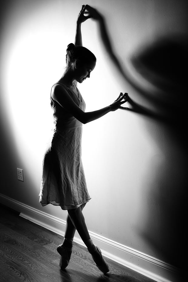 silhouette photo by photographer teb art photo